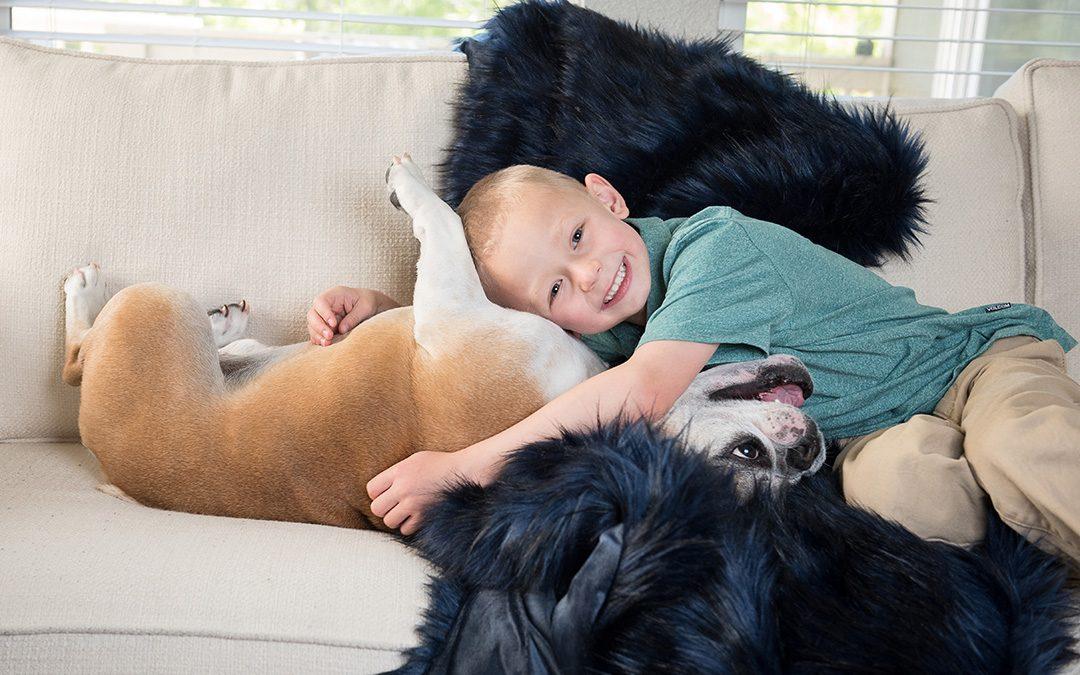 Child with English bulldog Dog